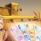 2016 Tarımsal Üretime Düşük Faizli Yatırım ve İşletme Kredisi Verilecek