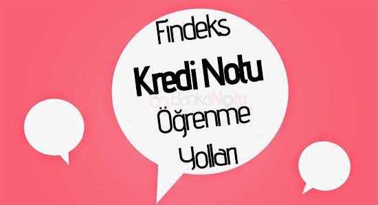 findeks-kredi-notu-öğrenme-yolları